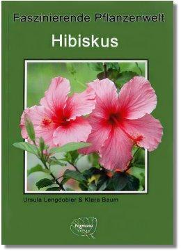 faszinierende_pflanzenwelt_hibiscus